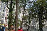 1-комнатная квартира, 42 кв.м., 2/8 этаж, новостройка